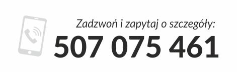 zadzwon-i-zapytaj - ZDZ Poznań