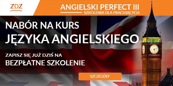 angielski-perfect-3-600×300-600×300